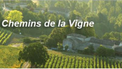 Iter-Vitis les Chemins de la vigne